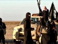العراق.. مقتل 7 دواعش في عملية أمنية جنوب كركوك