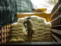 """""""الأغذية العالمي"""": توزيع 152 ألف طن مساعدات"""