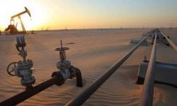 معادلة الشرعية.. المساعدات البترولية لشبوة ونفطها للإخوان (وثيقة)