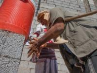 الغذاء العالمي: كورونا تُقرب اليمن من حافة الانهيار