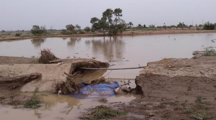 ري 7500 فدان بمياه الأمطار في لحج