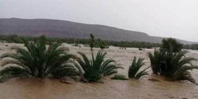 لجنة لتقييم أضرار السيول في حجر