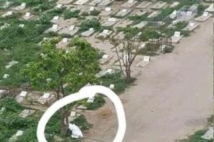 جثث ضحايا كورونا الفقراء بلا قبور في تعز