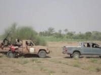 """اشتباكات بين """"المشتركة"""" ومليشيا الحوثي بالدريهمي"""