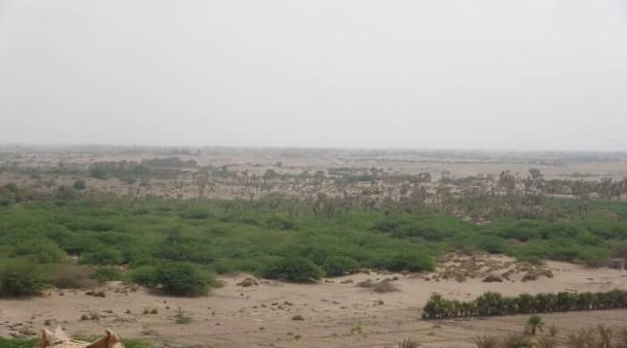 قتلى وجرحى في صفوف مليشيا الحوثي بالحديدة