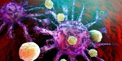 دراسة.. الخلايا المناعية تُنبئ بما ينتظر المريض المصاب بكورونا