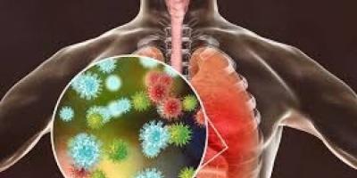 تعرف على خريطة تسلل فيروس كورونا المستجد للرئة