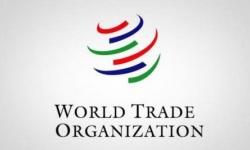 منظمة التجارة العالمية: إجراءات السعودية تجاه قطر مبررة