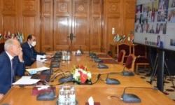 بالتفاصيل.. وزراء الخارجية العرب يتفقون على 9 بنود بشأن أزمة سد النهضة