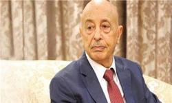 رئيس البرلمان الليبي: الشعب يطلب رسميا من مصر التدخل العسكري لمساندة جيشنا