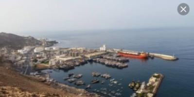 البرنامج السعودي: زيادة طاقة استيعاب ميناء نشطون بعد تطويره