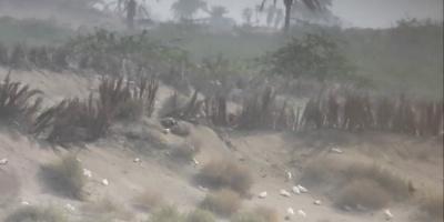 تحييد 3 قناصة حوثيين في الجاح