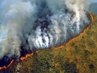 البرازيل: توقعات بحدوث أسوأ حرائق في غابات الأمازون بحلول أغسطس