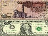 الدولار يستقر عند 16.9 جنيه في البنوك ومكاتب الصرافة المصرية