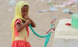 الغذاء العالمي: جائحة كورونا تهدد بمجاعة لم يشهدها العالم من قبل