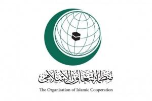 التعاون الإسلامي تدين مقتل الهاشمي بالعراق