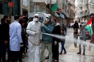 فلسطين تُسجل 475 إصابة جديدة بفيروس كورونا