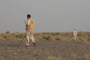 القوات المشتركة تنتشر شرق الخوخة بحثا عن ألغام حوثية