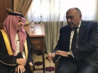 مصر والسعودية ترفضان تدخل الميليشيات المسلحة في ليبيا