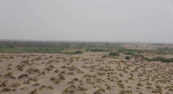 بالمدفعية والقناصين.. مليشيا الحوثي تروع سكان الجبلية