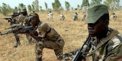 نيجيريا.. مقتل 8 من قيادات بوكو حرام في عملية أمنية