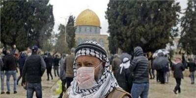 فلسطين تسجل 537 إصابة جديدة بكورونا و3 وفيات
