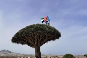 خيرات الإمارات تعالج سقطرى من تشوهات الإخوان (ملف)