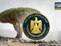 الأمن في سقطرى.. الجنوب يؤمن أراضيه من عبث الإخوان