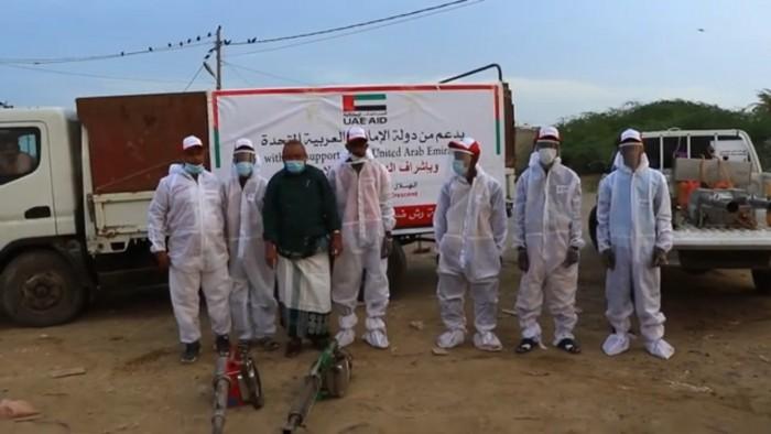حملة إماراتية لمحاصرة الحشرات الناقلة للأمراض بالمخا (فيديو)