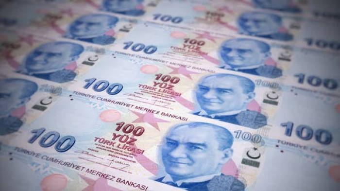 الليرة التركية تهبط لأدنى مستوياتها والتضخم يبلغ ذروته