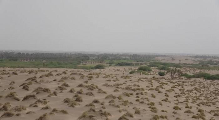 مليشيا الحوثي تُجدد قصفها لمزارع الجبلية بالهاون