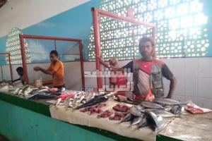 """مع انخفاض أسعاره..""""الشروى"""" يغزو أسواق السمك بأبين (صور)"""