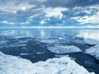تحذيرات بيئية من انخفاض جليد القطب الشمالي