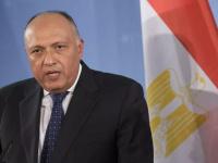 شكري: مصر والأردن لهما اتصال مباشر مع القضية الفلسطينية عبر العصور