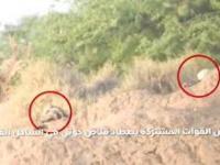بالفيديو.. تصفية قناص حوثي في الحديدة