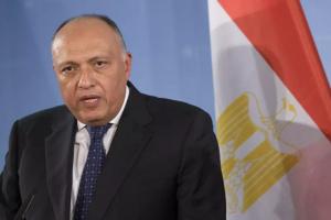 وزير الخارجية المصري يبحث مع نظيره المجري تعزيز العلاقات الثنائية بين البلدين