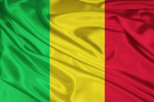 رئيس مالي يلتقي بالمبعوث الأمريكي الخاص إلى منطقة الساحل