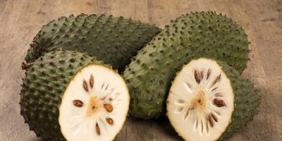 فوائد تناول فاكهة القشطة على جسم الإنسان