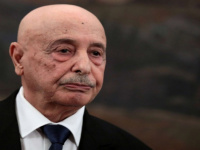 عقيلة صالح: حققنا نجاحا بوقف إطلاق النار ضمن اتفاق جنيف