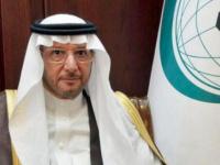 العثيمين يستنكر محاولات الاعتداء الحوثية على السعودية