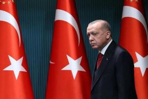إعلامي يسخر من قناة الجزيرة بسبب أردوغان