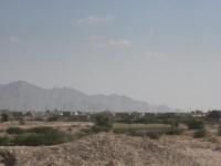 مصرع حوثيين خلال زرعهما قنبلة في حيس