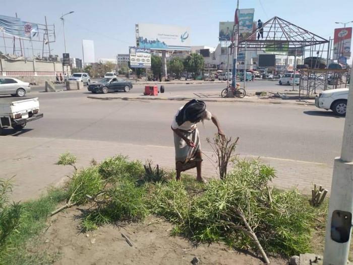 بالصور.. حملات توعية ونظافة في 4 مديريات بعدن