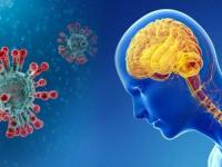 علماء يحذرون.. كورونا قد يؤثر على صحتنا العصبية