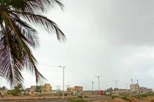 تساقط أمطار بسواحل شبوة والمهرة