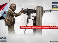 بطولات عسكرية في محاربة المليشيات الحوثية.. جنوبٌ يستحق الدعم