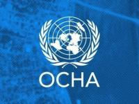 أوتشا: وفاة 233 ألف شخص بسبب الصراع في اليمن