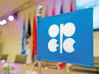 """من يناير.. """"أوبك+"""" تعلن موافقتها على زيادة إنتاج النفط 500 ألف برميل يوميًا """