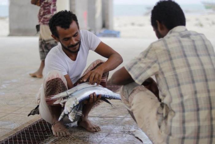 """شراكة بين """"فاو"""" و""""سلمان للإغاثة"""" لدعم أسر الصيادين"""