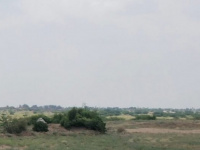 """""""المشتركة"""" تخمد نيران حوثيين هجموا أهالي حيس"""